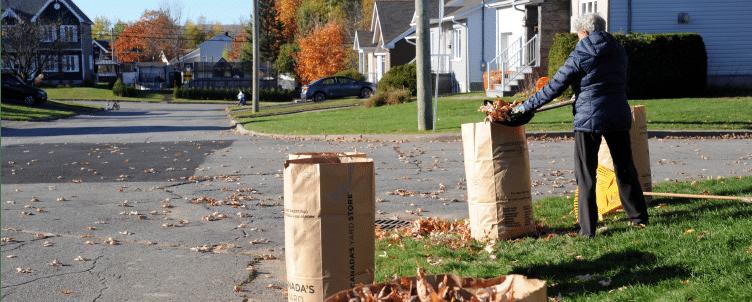 Collecte de résidus verts et feuilles, sacs en papier